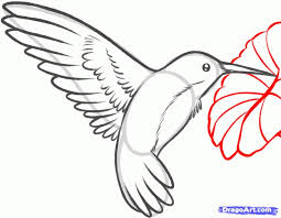 coloring page surprising simple bird drawing drawings of birds