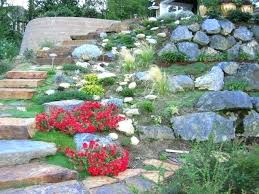 Best Plants For Rock Gardens Plants For A Rock Garden Inspirational Rock Gardens To Get You