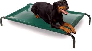 bedroom marvellous what are the best dog beds for large dogs