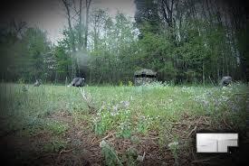 Natural Hunting Blinds Selfilmed Ground Blind Turkey Hunting Tactics Selfilmed Blog