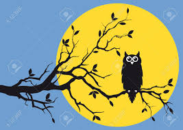 owl on tree branch royalty free cliparts vectors and stock