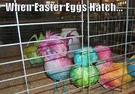 Easter Funny Memes - funny 2018 happy easter memes easter memes 18 happy easter