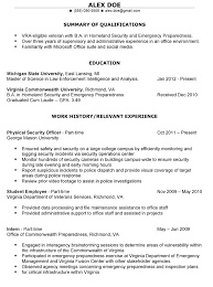 Resume Professional Summary Examples by How To Write Your Resume Summary