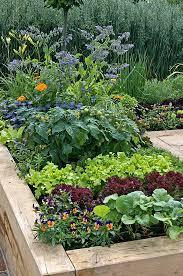 raised bed gardening benefits what do they actually do gp