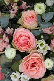 wedding flowers eucalyptus pink roses and eucalyptus in a pink white wedding flower