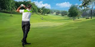 materials backyard golf