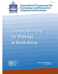 bureau de l ex ution des peines drainage status and capacity building pdf available