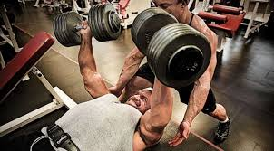 How Much Can Triple H Bench Press Triple H Workout How Does The Game Maintain His Physique