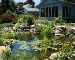 backyard pond projects bucks u0026 montgomery county eastern