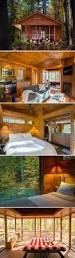 Small Hunting Cabin Plans Best 25 Hunting Cabin Ideas On Pinterest Small Cabins Garden