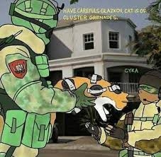 Internet Rainbow Meme - cat is of cluster grenades internet meme meme playstation 4