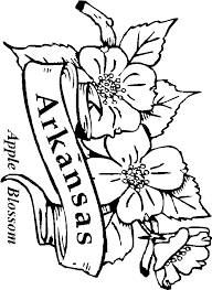 Easter Flower Coloring Pages - 50 state flowers coloring pages for kids