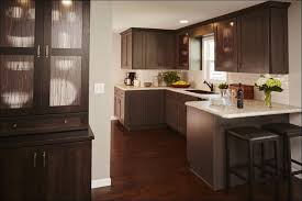 Staining Kitchen Cabinets Darker by Kitchen Light Grey Kitchen Cabinets Staining Kitchen Cabinets