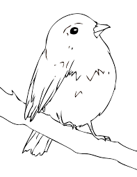 robin bird coloring pages flower page printable coloring sheets mi
