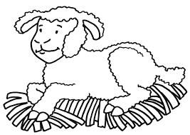 coloring sheep img 21235