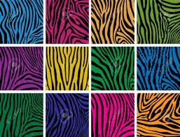 zebra pattern stock photos u0026 pictures royalty free zebra pattern