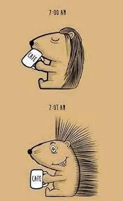 Cafe Meme - después del café que jalada