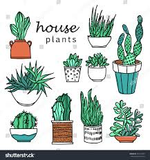 Office Plants by Illustration Houseplants Indoor Office Plants Pot Stock Vector
