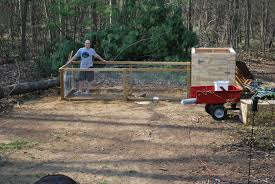 backyard chicken coop diy with chicken coops for backyard flocks