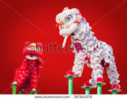 new year lion costume lion costume used during stock photo 255616270