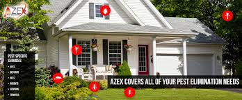 house pest control bed bugs termites heat treatments thermal pest control azex
