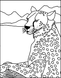 2014 cheetah coloring sheets coloring home