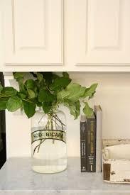 best 25 lily shop ideas on pinterest calla lillies wedding