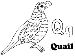 Alphabet Coloring Pages Printable Free Luxury Letter Q Page About Coloring Pages Q