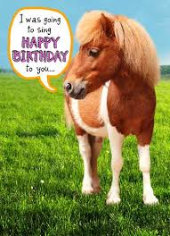 Horse Birthday Meme - funny birthday card what s hot but i m a little horse horse