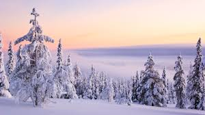winter nature wallpapers best images about wallpaper on pinterest christmas winter hd