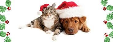 christmas merry mutts valley animal center fresno 1 december