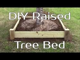 diy raised tree bed or planter youtube