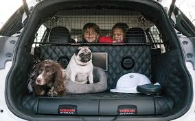 nissan x trail 4dogs cars for dogs concept 2017 nissan x trail