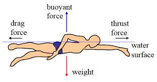 physics of swimming