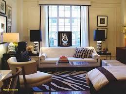 home design ideas for apartments living room apartment interior design unique small studio furniture