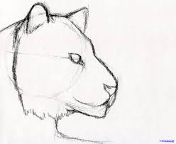 pencil sketches for beginners step by step pencil art drawing