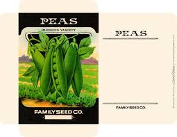 seed packets all occasion seed packets free graphics cathe holden s inspired