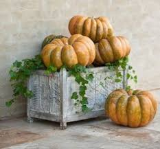Thanksgiving Pumpkin Decorations 205 Best Fall Decorations Images On Pinterest Porch Decorating
