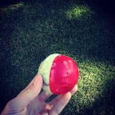 the backyard cricketer equipment