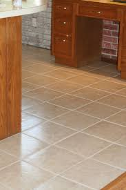 Can You Clean Laminate Floors With Bleach Best 25 Best Grout Cleaner Ideas On Pinterest Clean Grout
