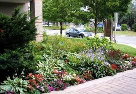 small front yard garden ideas