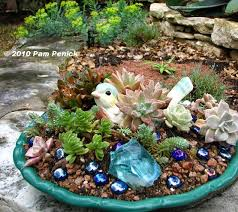 Dish Garden Ideas Chirpy Succulent Dish Digging