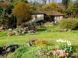 Rock Gardens Brighton The Galloping Gardener Brighton S Blooming