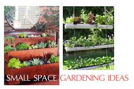 best small space gardening ideas 1o small space garden ideas oh my