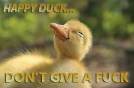 Dont Give A Fuck Meme - happy duck don t give a fuck meme by sapheron art on deviantart