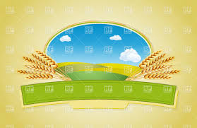 package desing wars of wheat emblem with landscape vector image