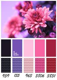 Colorcombinations 489 Best Embroidery Color Combinations Images On Pinterest Dmc