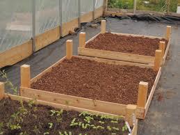 Cedar Raised Garden Bed Building Cedar Wood Raised Garden Beds Inside Greenhouse For