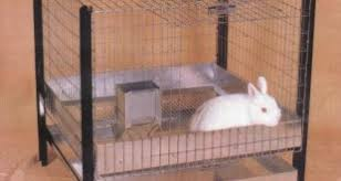 Stackable Rabbit Hutches Best Rabbit Cages Rabbit Homes Rabbit Hutches