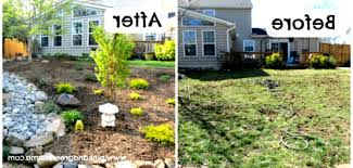 backyard landscaping ideas dogs on a budget new home rule the